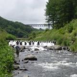 2009年の釣り 7月7日 信濃川上・西川へ釣りのサムネイル