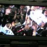 『(番外編)阪神タイガース優勝!』の画像