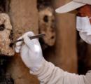 【ペルー】800年前の木製の偶像が見つかる