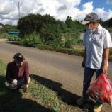 『おおまさり収穫→スタバ→メダカたちのリロケーション』の画像