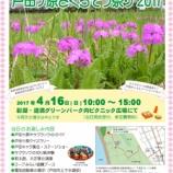 『戸田ヶ原さくらそう祭り2017 4月16日(日)開催 戸田市のマンホールカードも配られます!』の画像
