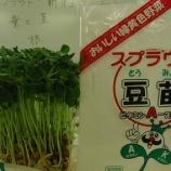 『【ながさき】野菜の高値続く…そんな時は? (*゚▽゚*)』の画像