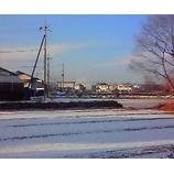 『夜半からの雪』の画像