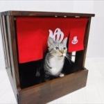 【画像】猫になりたい願望を叶える「人間用ペットハウス」が登場www