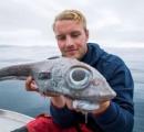 【画像】ノルウェーでとんでもない魚が取れてしまう