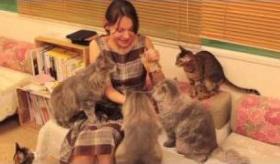 【日本文化】   東京には 猫だらけの 猫カフェ というものがあるらしい。  まさに 天国じゃないか!!  海外の反応