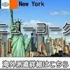 『アメリカ・ニューヨークインコール求人情報』の画像