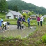 『田植え体験会第二弾は雨ではじまりました』の画像