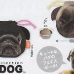 「THE DOG パグフェイスポーチコレクション」パグ顔がポーチになってガチャに登場