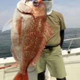 『8月4日、5日 釣果 スーパーライトジギング CBONE』の画像