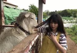 一部変なのあり?! 乃木坂46メンバーと動物の画像wwwww