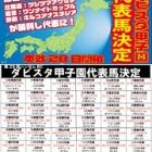 『第29回ハンサムBCダビスタ甲子園開催』の画像