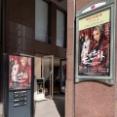 【ハピリポ】①素晴らしすぎて、、『ロックオペラ モーツァルト』