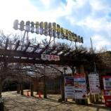 『JAL×はんつ遠藤コラボ企画【南あわじ市編】3日め・バーガー&海鮮料理(道の駅うずしお)』の画像