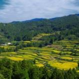『いつか行きたい日本の名所 吉延の棚田』の画像