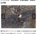 アマゾン奥地の先住民 ドローンで撮影