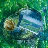 『【オンライン販売】「YOIYO」待望の第三弾は厚岸蒸溜所とのコラボ! 「YOIYO 厚岸-芒種-」』の画像