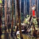 『【乃木坂46】何者か分からなくなってきた斎藤ちはるさんwwwww』の画像
