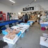 『1月 6日 釣魚のワンコイン捌きサービススタート!! 釣果 クロソイ狙い』の画像