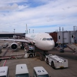 『【EVA航空(BR)】成田~桃園 エコノミークラス搭乗記』の画像