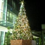 『もぅ・・・クリスマス』の画像