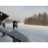 『本日も新雪楽しめます。風があるので寒さ対策してお越しください。』の画像