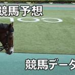 競馬ニュース・競馬データまとめサイト