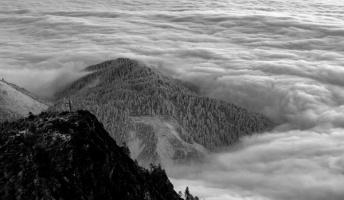 『虫の生首』『水神信仰』『サードマン』他 海・山にまつわる怖い話・不思議な話