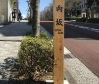 【日向坂46】宮崎県広報ツイッターに日向坂が!