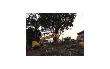 『神森の消失』の画像