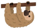 【悲報】ナマケモノさん、お猿さんにごはんを取られて咽び泣く