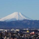 『2月の東大和の紅白梅と富士山』の画像