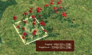 新規アイテム 赤いバラのタイル(部分)(全体)