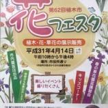 『戸田市花フェスタ(第62回植木市) 4月14日(日)開催。戸田市役所正門付近と西側の市役所通りを歩行者天国にして開催されます。どうぞご予定ください。』の画像