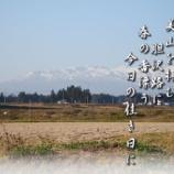 『フォト短歌「春の香り」』の画像