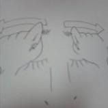 『眉間の皺解消法』の画像