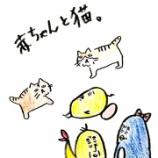 『👶赤ちゃんと猫👶』の画像