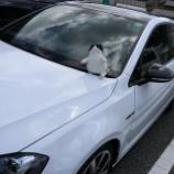 『【大分】九州自動車歴史館へ行ってきました!』の画像