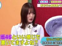 【悲報】山崎怜奈、外番組で「乃木坂46と距離おいてますよね?」と言われてしまう...