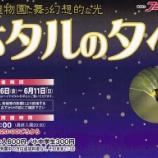 『【夜21時まで】はままつフラワーパークでホタルが見られる「蛍の夕べ」夜間開園は6月11日まで!』の画像