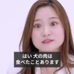 【動画】英BBCリポート「韓国で深まる分断、犬は食べ物?それともペット?」