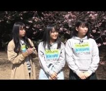 『【動画】【中島早貴、野村みなみ、和田桜子】環境省MY行動宣言やれるはずさ!入門編Part1・2』の画像