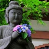 『長谷寺あじさい』の画像