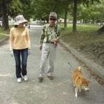 犬の散歩でトラブル、殴られたから殴り返し老人重症に!中年正当防衛で無罪…