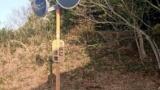 ワイ29歳こどおじニート、ど田舎ご近所散歩に行く(※画像あり)