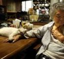 【マレーシア】飼い主の葬儀にやって来た猫 墓を掘り起こそうと試みる(動画)