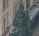【画像】シアトルで高さ24mの木の上で男が警察と睨み合う ツイッターでハッシュタグまで付く