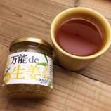 『カルディの「万能 de 生姜」(生姜ジャム)が美味しい! / #温活大作戦!!』の画像