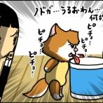 猫の水入れ機の近くにボディタオルを置いた結果