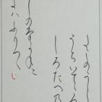 書道ペン字日記~サチの記録~